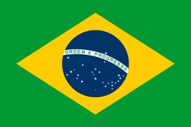 Low wood fiber costs in Brazil continue to attract investments in pulp