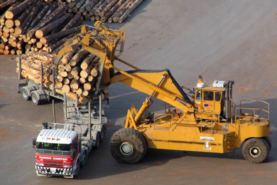 17 July 2017 | The total value of logs exported from New Zealand in the 1Q/17 was almost three times as high as the value of exported lumber, reports the Wood Resource Quarterly