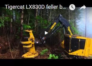 Tigercat LX830D feller buncher in Oregon