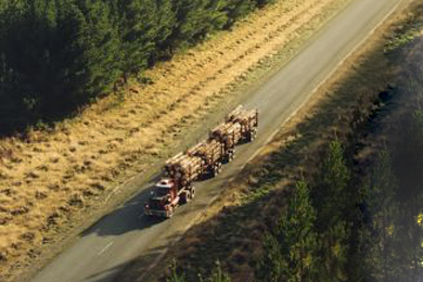 Debate over foresters' share of roading costs –NZ | 18 August 2017