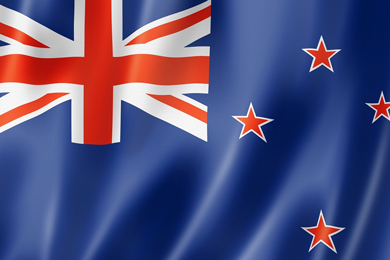 NZ Study: More than enough fibre for new mill