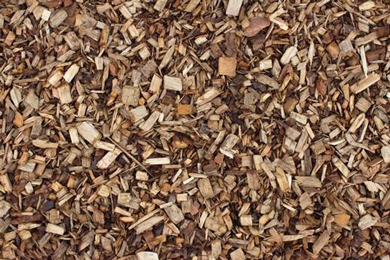 Global Timber and Wood Products Market Update | 16 Nov 2017