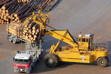 NZ exports more than a million cubic metres of softwood logs in a month