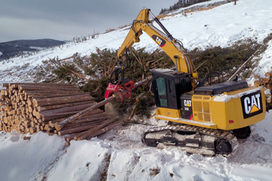 Caterpillar Launches Cat® 548 And 548 LL Forest Machines