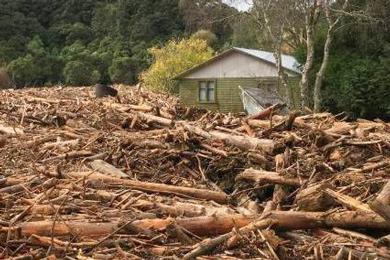 NZ – Slash – Forestry debris – causes major damage on the East coast