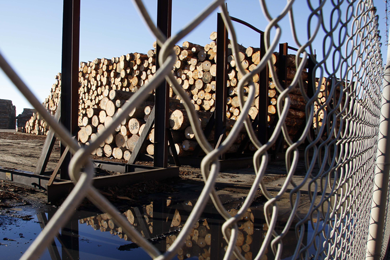 NZ structural log prices hit 25-year high