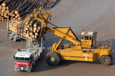 NZ log export fallout from US trade disputes