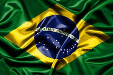 Brazil's wood-based product exports increased by 8.4% in September