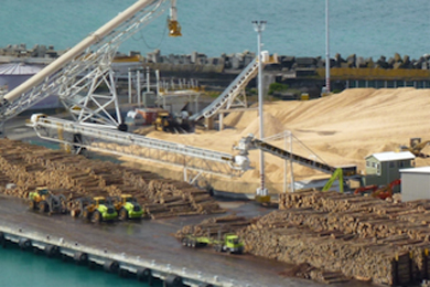 NZ – Napier Port sets new records