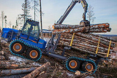 Swedish Forest Agency: The notified area of final felling increased by 16% in Dec 2018