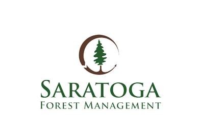 Saratoga Forest Management suspends production