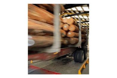 World-first robotic logging truck scalers - International