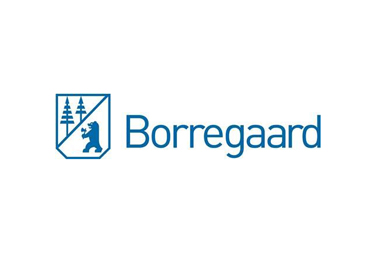 Borregaard to invest in project aimed at increasing the use of bioenergy