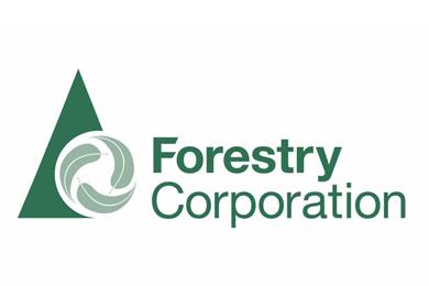 Australia – 7.4 million pine seedlings being dispatched from Blowering Nursery