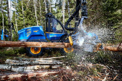 Swedish Forest Agency: Gross felling is expected to increase in 2019
