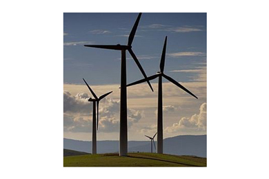 Australia – Wind farm proposal on forest land gaining momentum