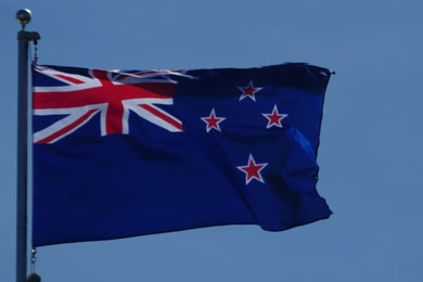 NZ – Logging Halt Hits Exports