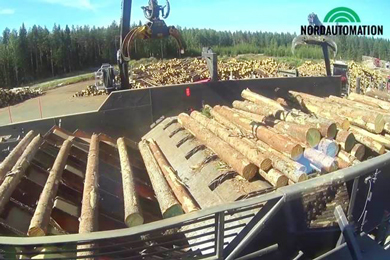 Log sorting lines to Russia